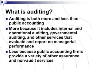 """What is """"audit"""""""